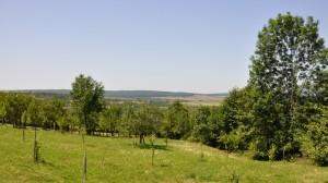 dealul_cetatuia2
